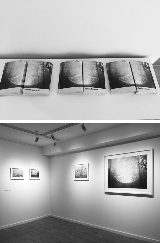 Fertile Ground Exhibition - And Then