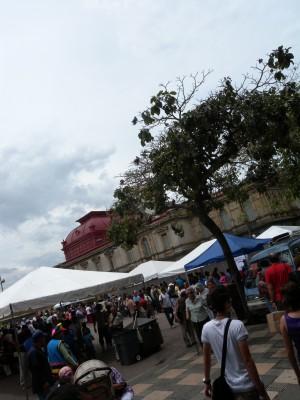 Plaza cultura