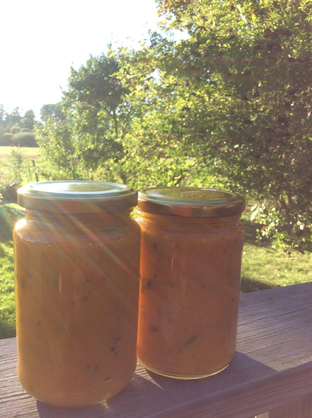 Golden Prana -livsenergi- i överflöd i sommarens tomatsås <3