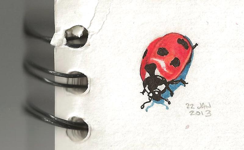22_ladybug.jpg