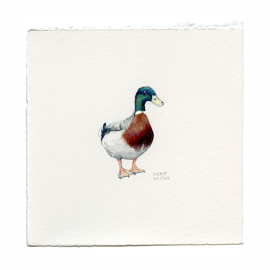 Suggested by Megan E. | Watercolor, verithin colored pencil