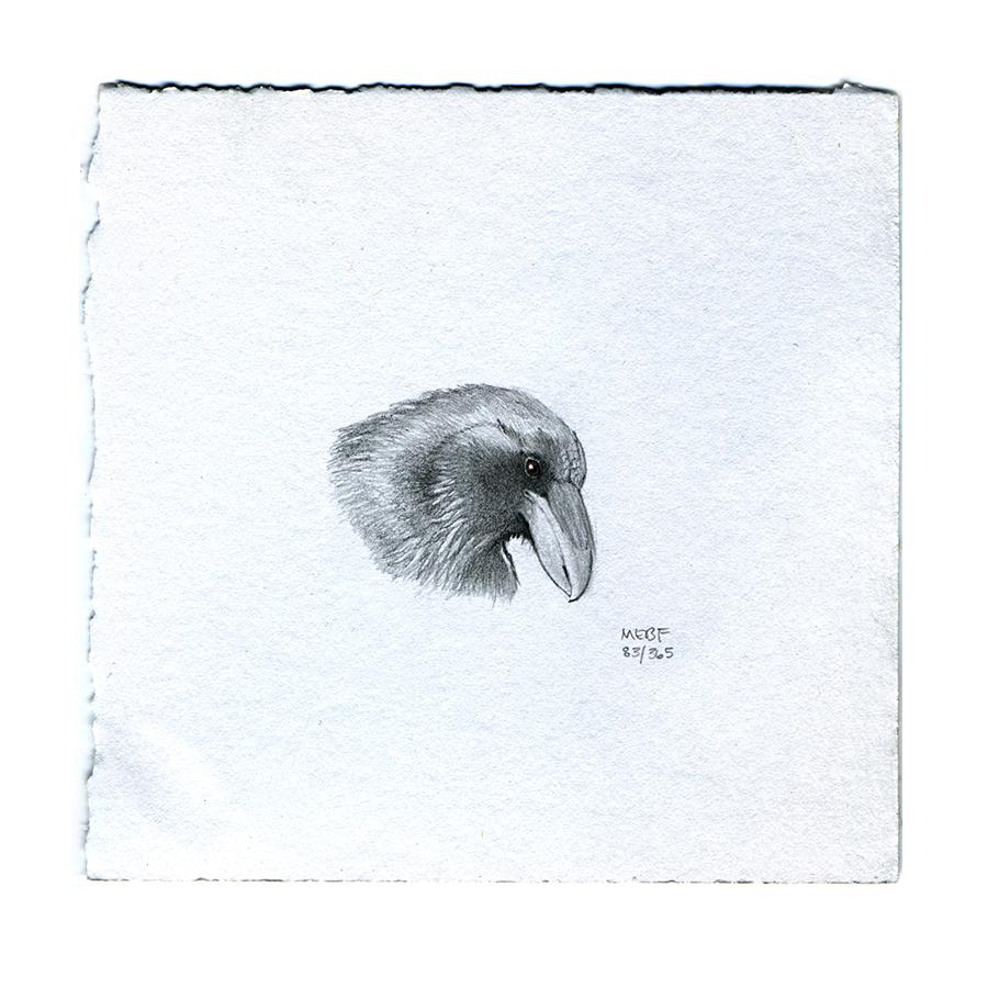 draw83_crow.jpg
