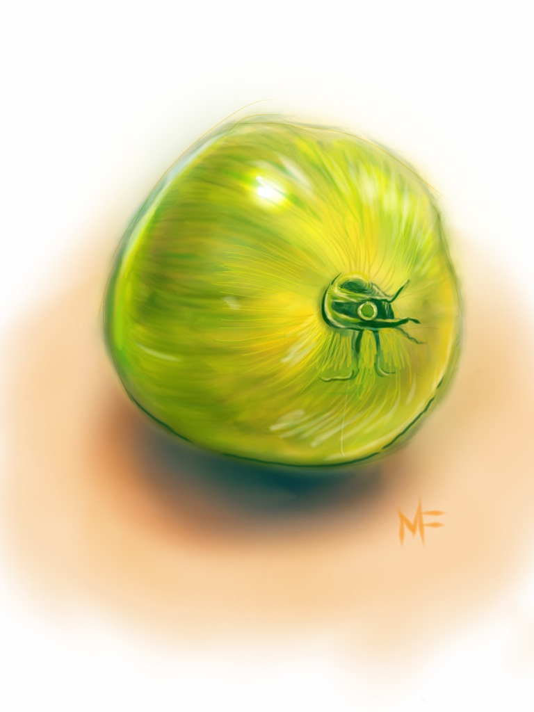 05_ipad_tomato.jpg