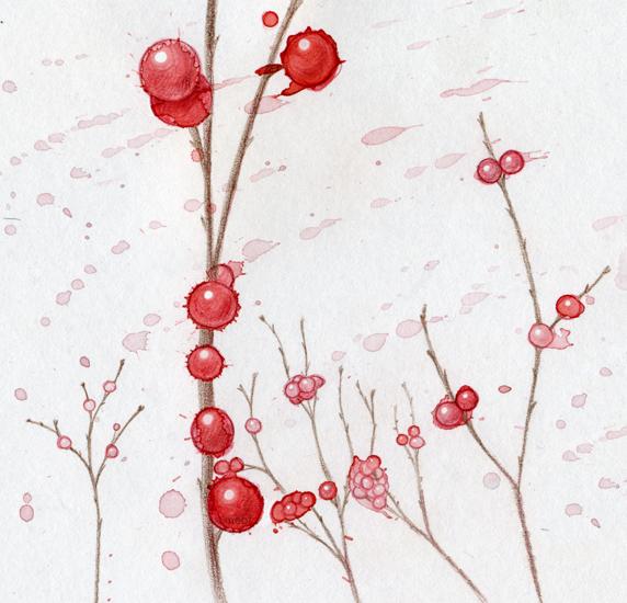 winter_berries.jpg