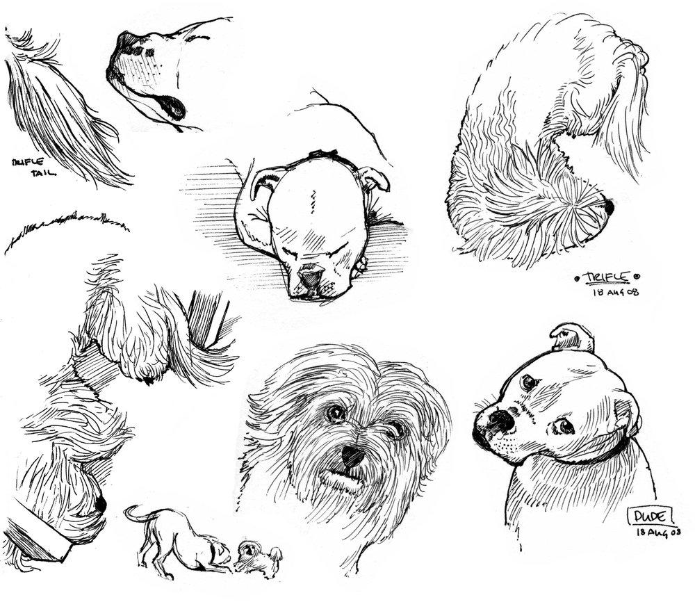 jeff_heath_dogs(ink).jpg