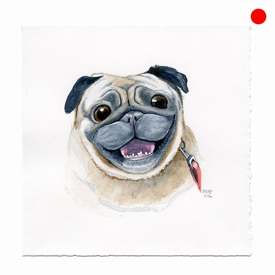 happy_pug_face001.jpg