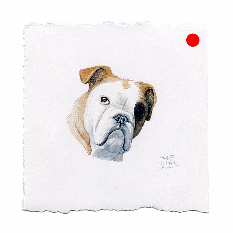 draw111_gimli(bulldog).jpg