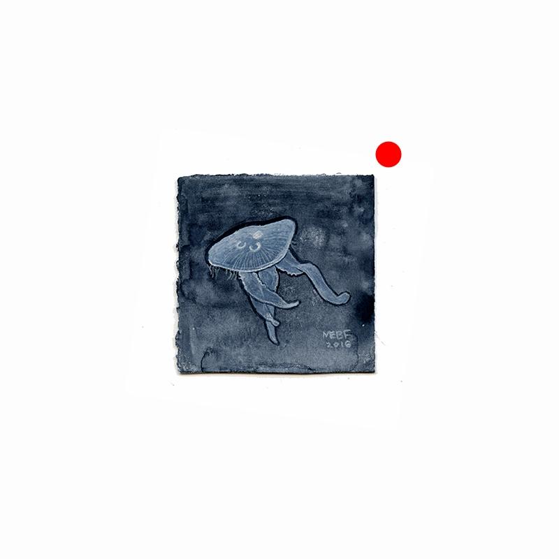 jellyfish001.jpg