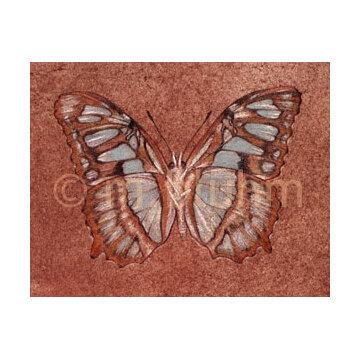 mbluhm_butterfly.jpg