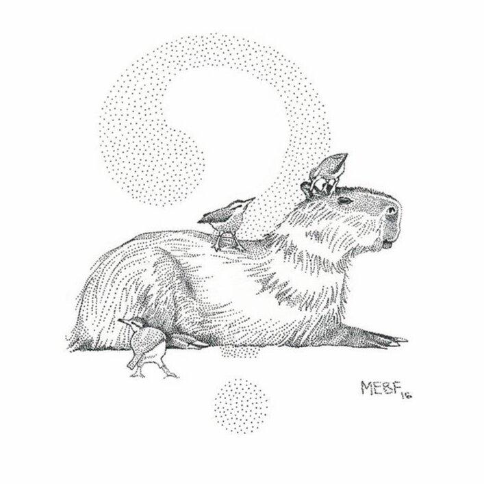 dot_capybara.jpg