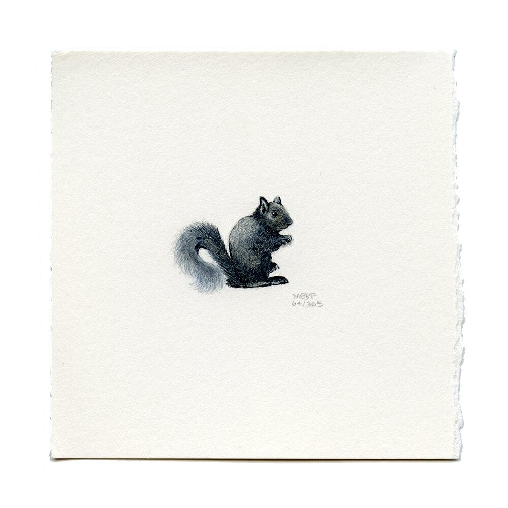 Black Squirrel - SOLD