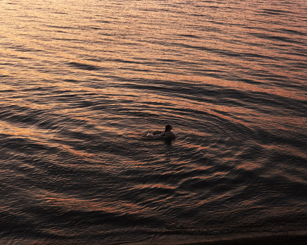 Dusk swim. Lake Erie. www.jasonfalchook.com