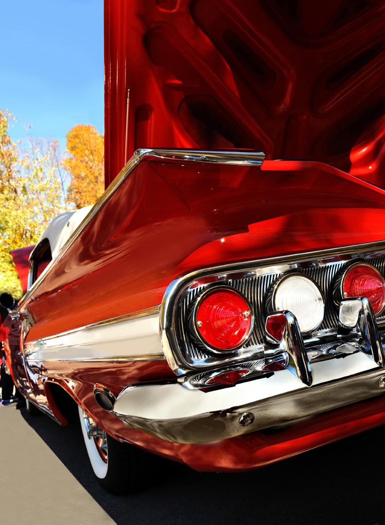 1 impala.jpg