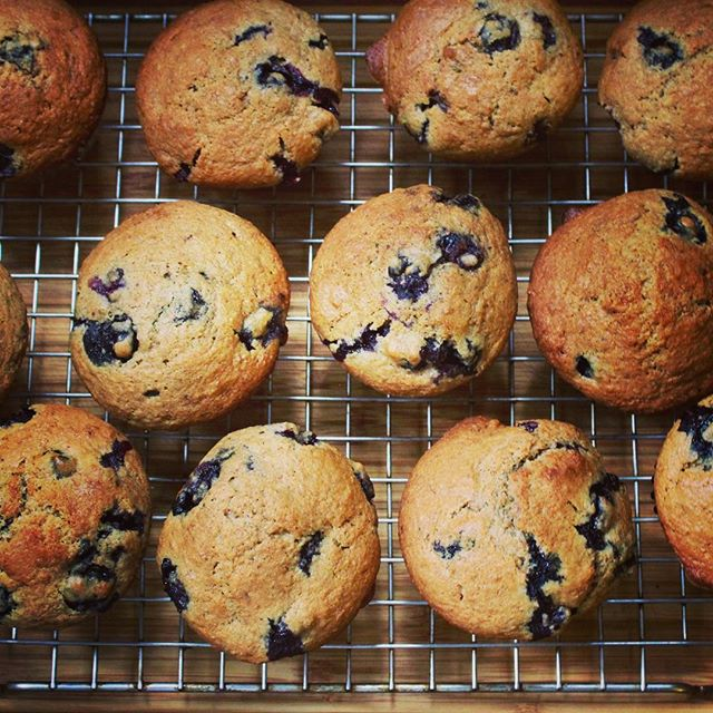 Wake up! Blueberry Bran Muffins set yer day up right.