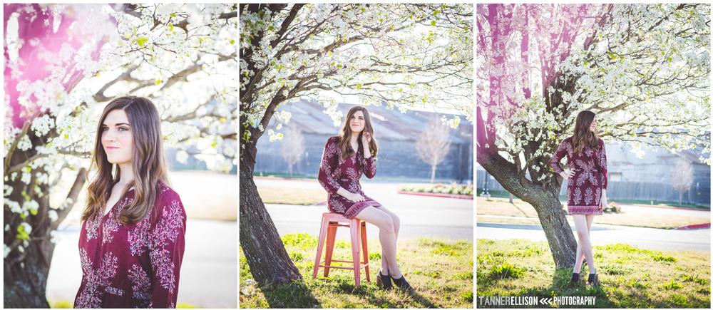 collage4.jpg