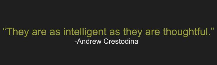 crestodinaFIXEDimage.jpg