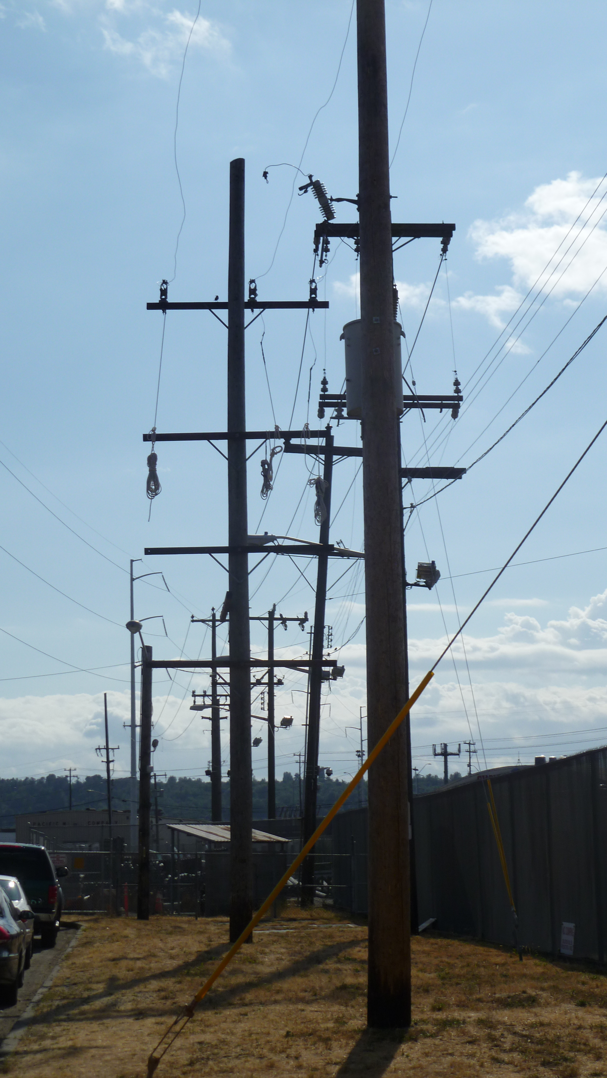 Telephone poles are Work That Needs Doing