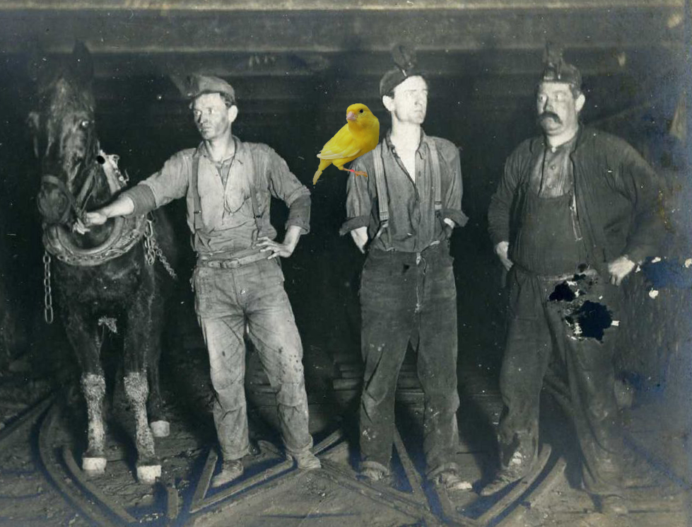 coal-miners-with-canary.png