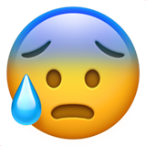 face-with-open-mouth-and-cold-sweat_1f630 (1).png