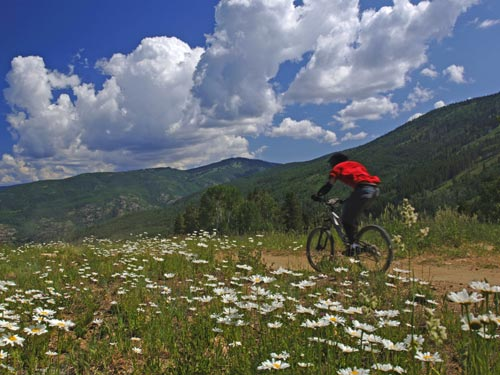 Mountain Biking | Steamboat Bike Park | Things to do in Steamboat Springs, Colorado