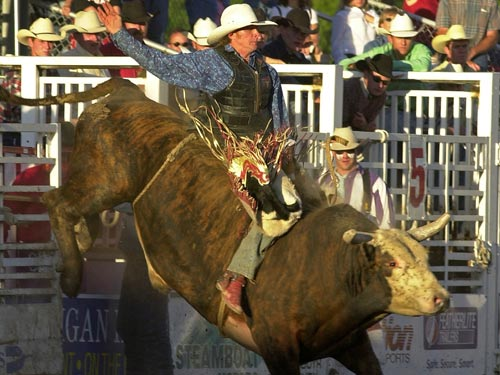 PRCA Pro Rodeo Series at Romick Rodeo Arena | Things to do in Steamboat Springs, Colorado