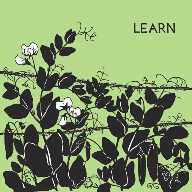 learn-1024x1024.jpg