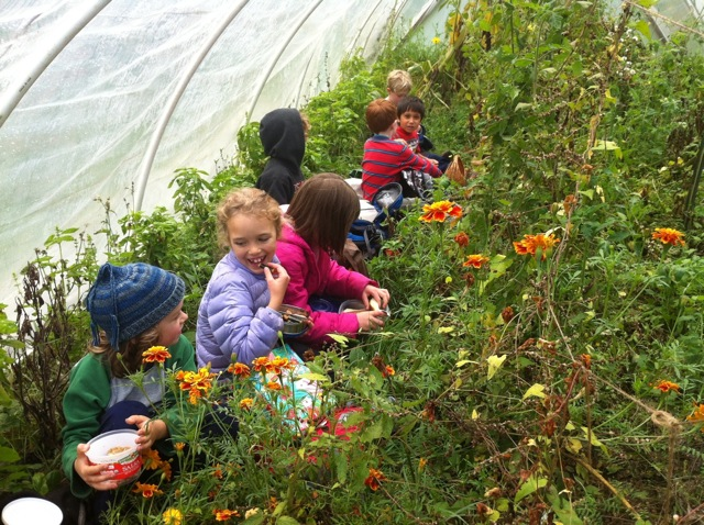 warm lunch in the hoop-house