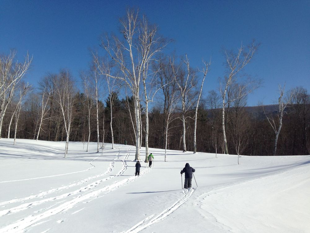 Cross Country Ski on our estate LR.jpg