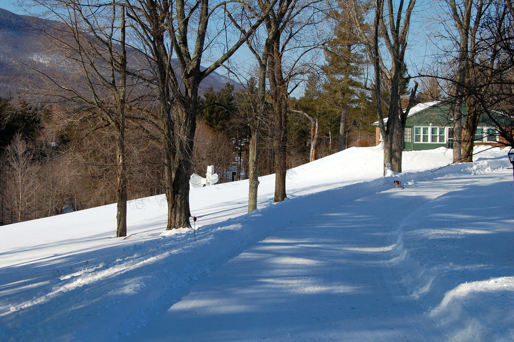 driveway up to innkeepers cottage.jpg