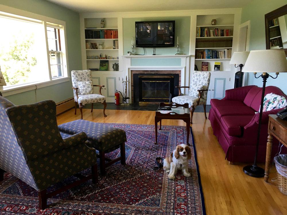 Jetson in innkeepers livingroom.jpg