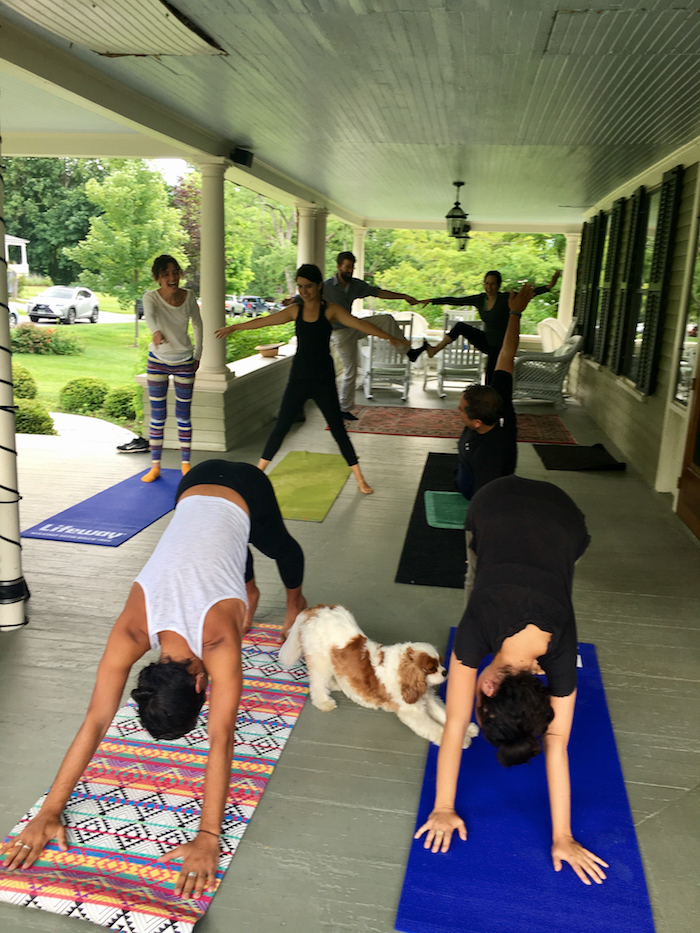 downward dog gables.jpg