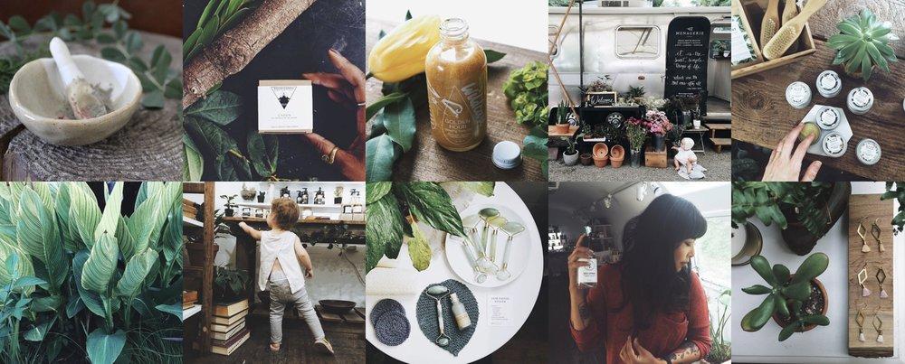 Menagerie_Instagram