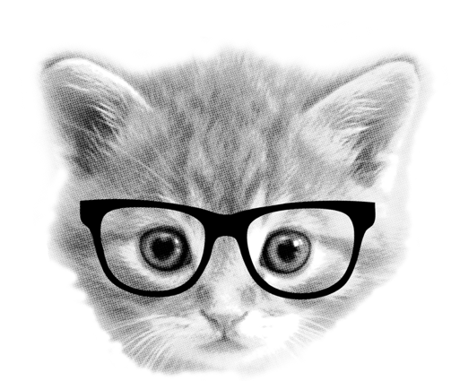 kitten with glasses.