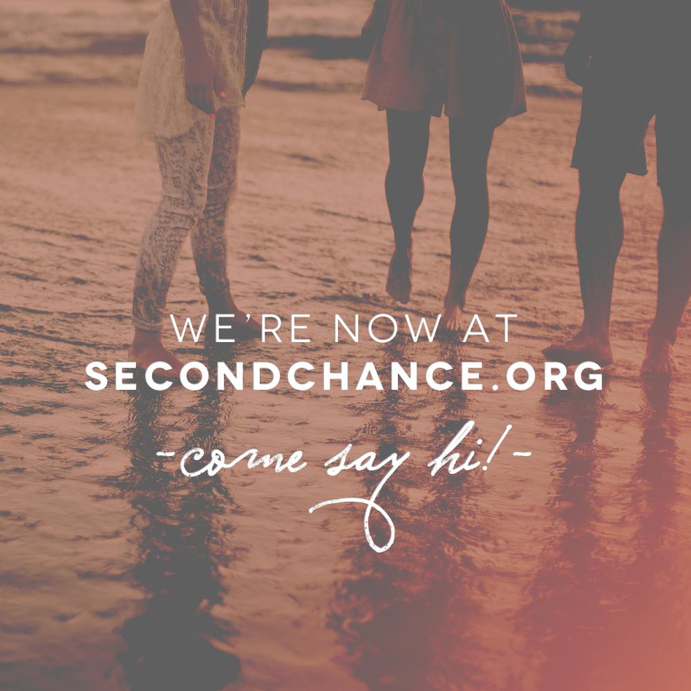 Social Promotional | SecondChance.org
