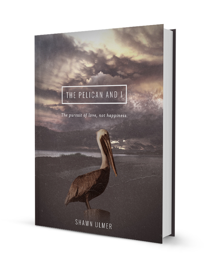 Book Sleeve | The Pelican and I