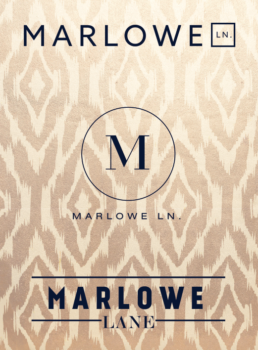 Identity Concepts | Marlowe Lane | CO