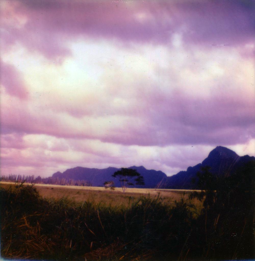 landscap.jpg