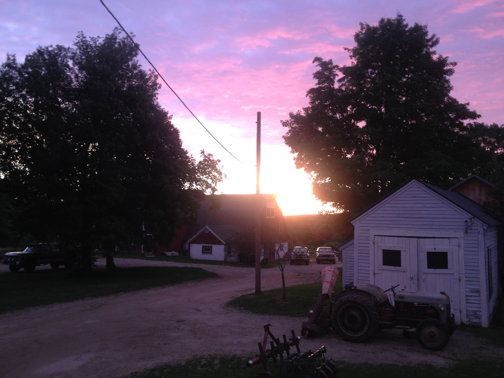 The sun rises at 5:00am on our season's first big harvest day.