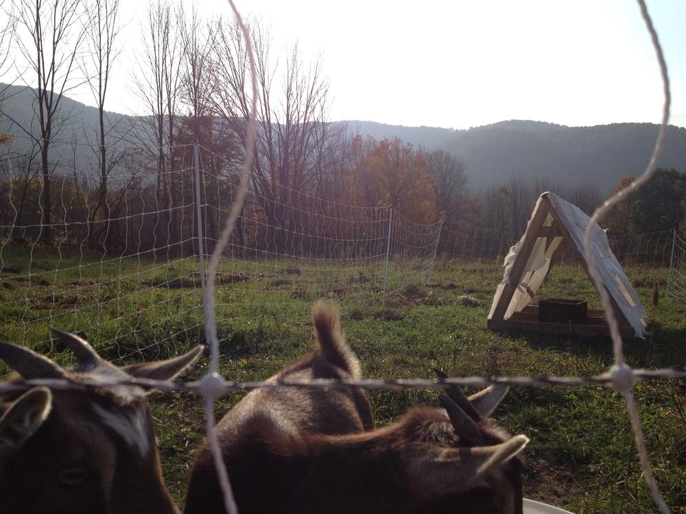 2013-10-02 16.44.33.jpg