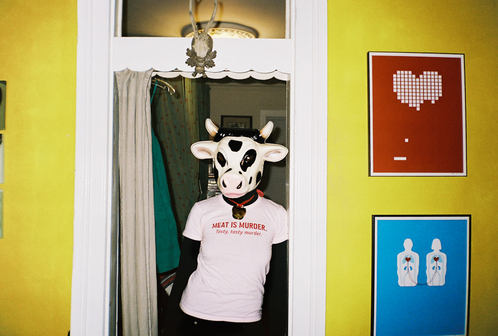 a portrait of the artist as a cow, in her apartment. (c) Osvaldo Ponton.  reblogged from  meenamoredelespacio :       Nicole.