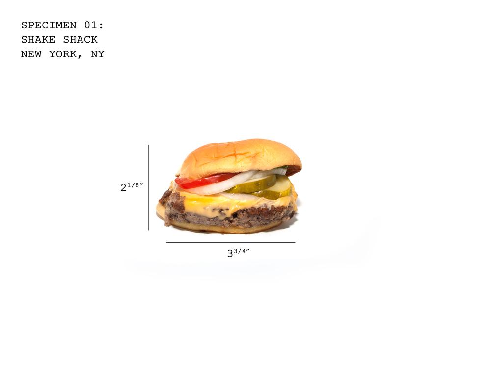 Burger01_ShakeShack_B.jpg