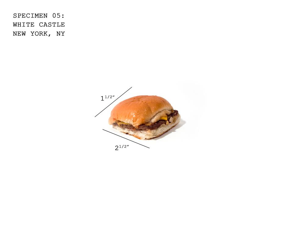 Burger05_WhiteCastle.jpg