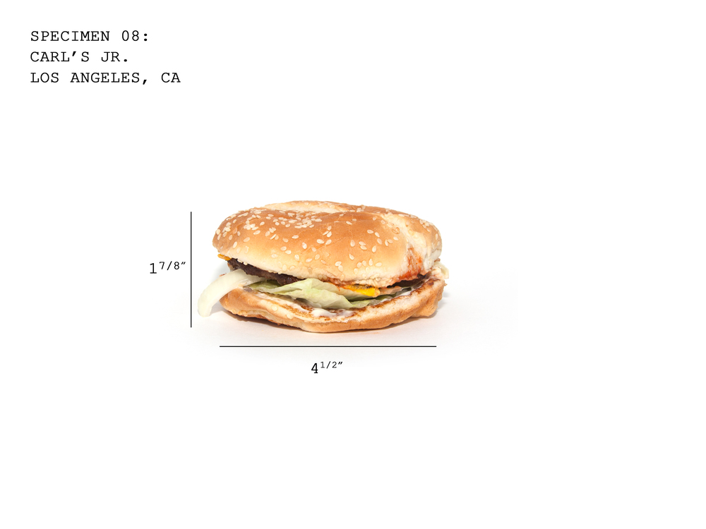 Burger08_CarlsJr.jpg