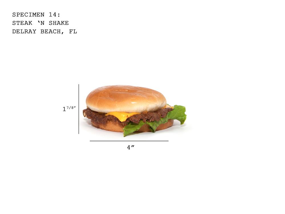 Burger14_SteakNShake.jpg