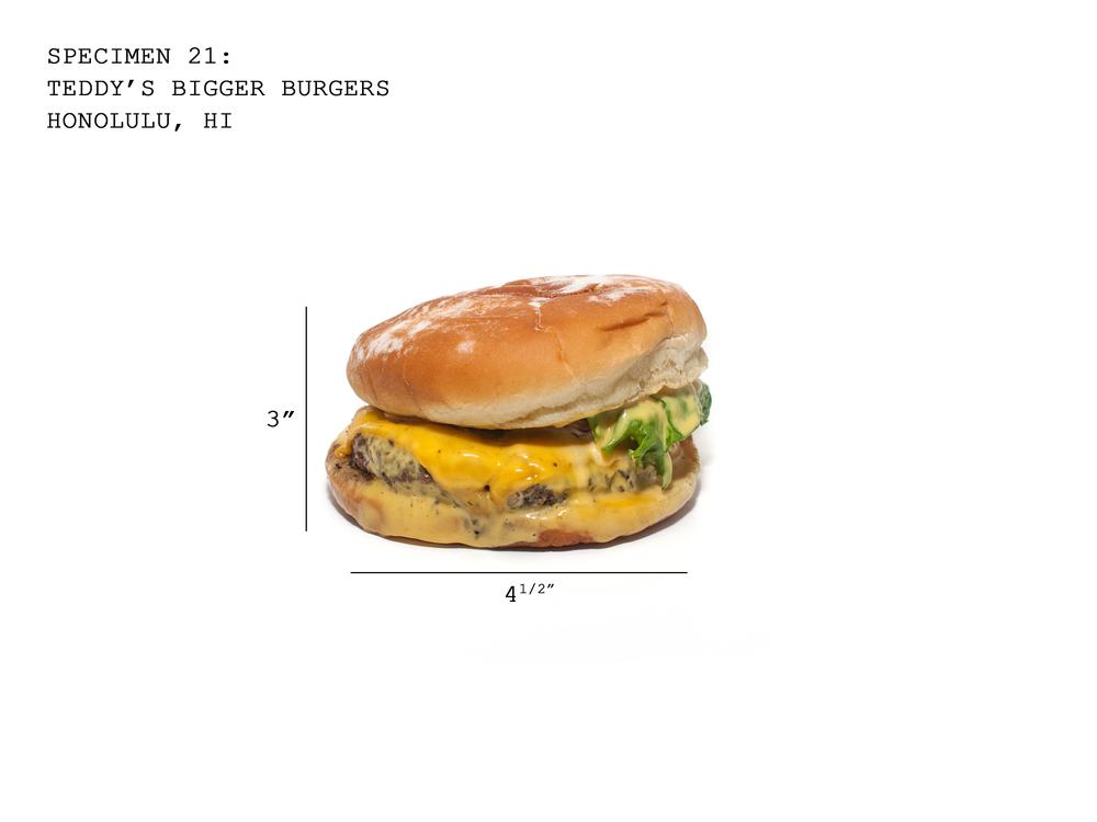 Burger21_Teddys.jpg