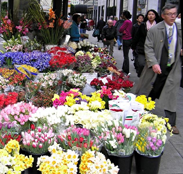 Massed Blooms.jpg