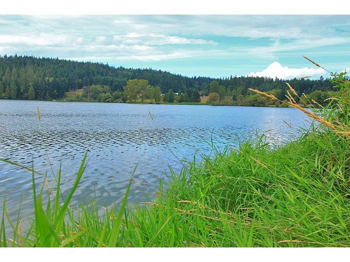 April Drive - Lone Lake.jpg