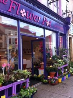 The Flower Pot, Main St. Charleville