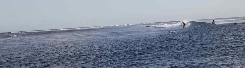 Dad surfing159.jpeg