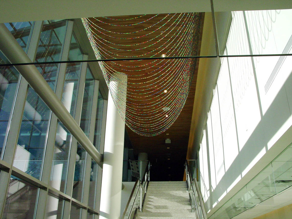 Gene Pairs ... With Ellipses, 2003, Plastic pony beads and nylon string, 35 x 25' (Installed at the Bureau of Criminal Investigation, Minneapolis, MN)